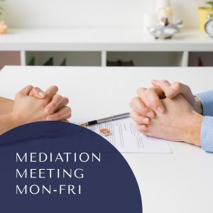 Joint Mediation Meeting – Monday to Friday 9:00 AM to 5:00 PM